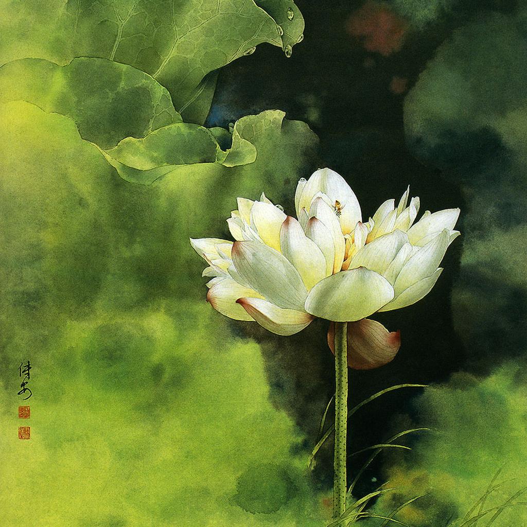 chinese painting lotus ipad wallpaper download free ipad